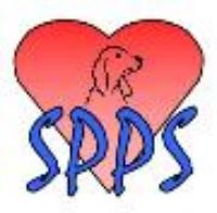 "Spirit of Phoenix Pet Services -- ""Keeping Your Pets in Happy Spirits"""