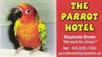 Welcome to www.parrothotel.ca