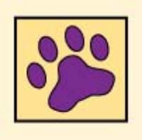 Middlesex, Union, Somerset Counties, Pet Sitting, Dog Walking, Pet Care Service