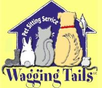 Pet Sitting CT - Dog Sitting - Cat Sitting - Wagging Tails LLC